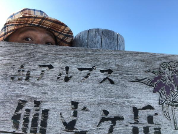 仙丈ヶ岳 201031-1101 大好きな山 予告編_e0338862_20013547.jpg