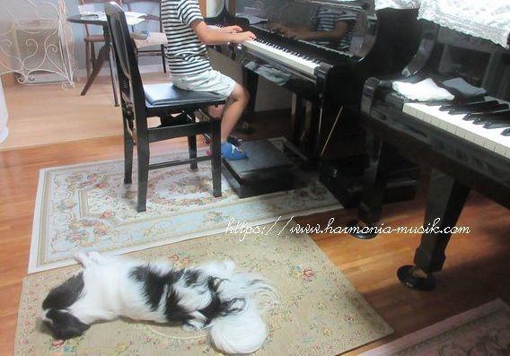 ピアノ教室☆通信☆「ゆとり」vs「隙」_d0165645_11493996.jpg