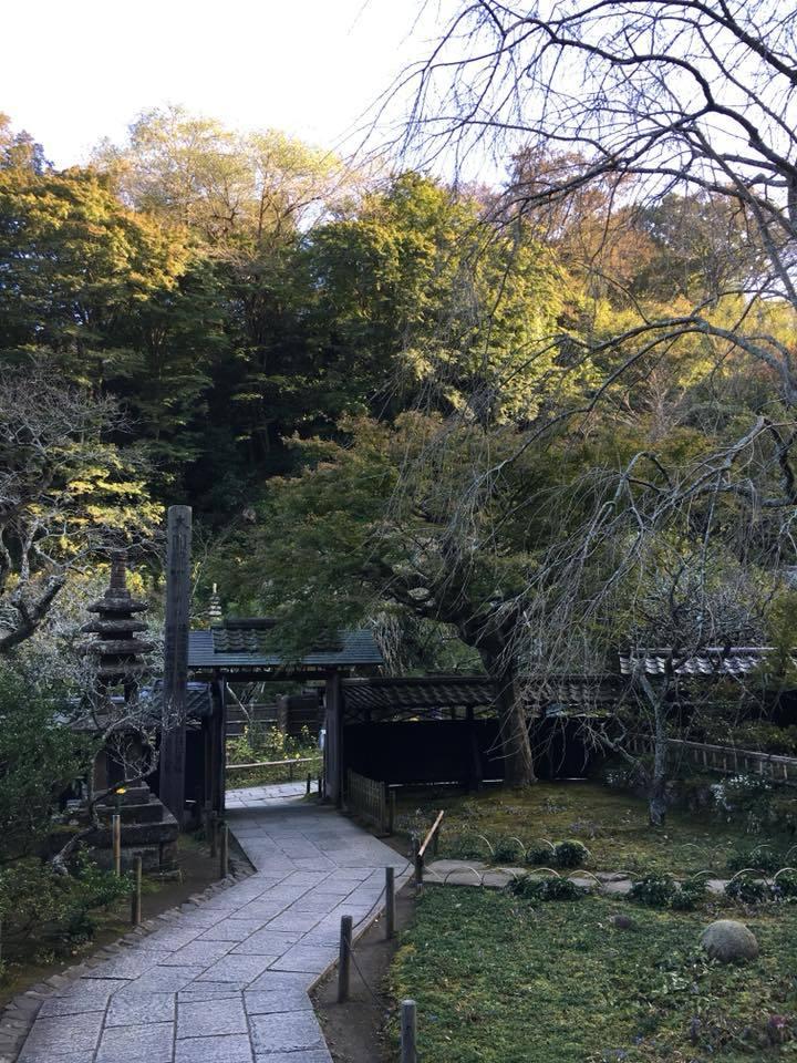 3年前の鎌倉の思い出 -東慶寺の水月観音、海蔵寺の底抜けの井ー_a0020162_10262253.jpg