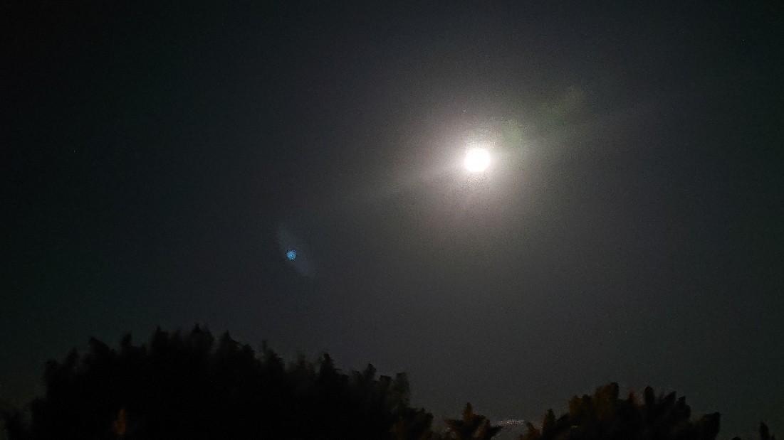牡牛座満月からの訪れ***_e0290872_08332494.jpg