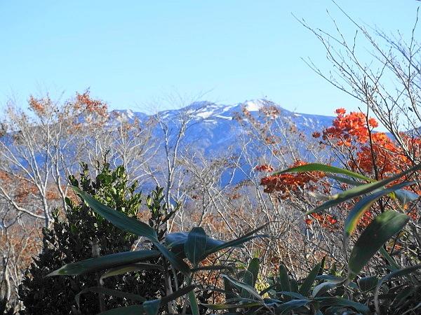 白山ド~んの大長山 SOTA#JA/IK-001_f0073587_18205784.jpg