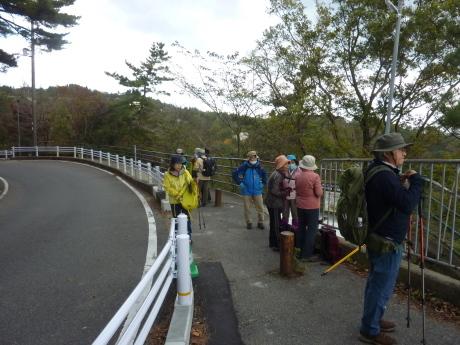 瑞宝寺公園~魚屋道~油コブシ_c0218841_20464724.jpg