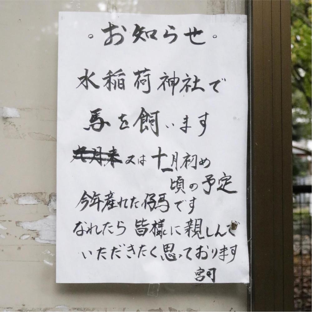 水稲荷神社の貼り紙、個性があって面白い_c0060143_18180374.jpg