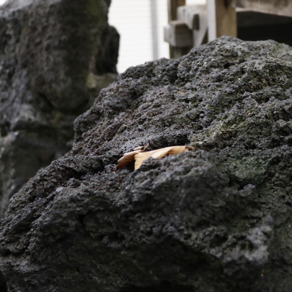 雑司ヶ谷駅近くの稲荷神社に富士塚の痕跡_c0060143_18435672.jpg