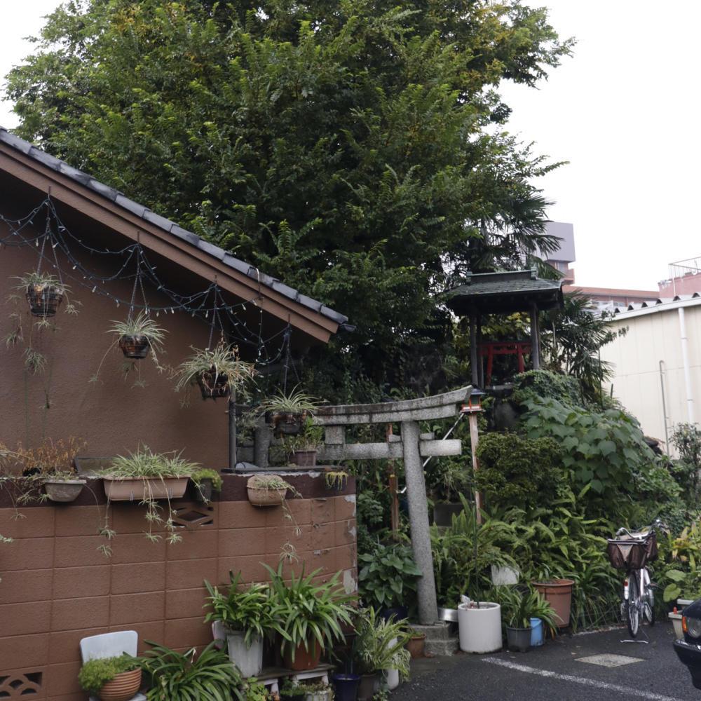 駐車場の敷地内にある富士塚、尾久浅間神社_c0060143_19592225.jpg