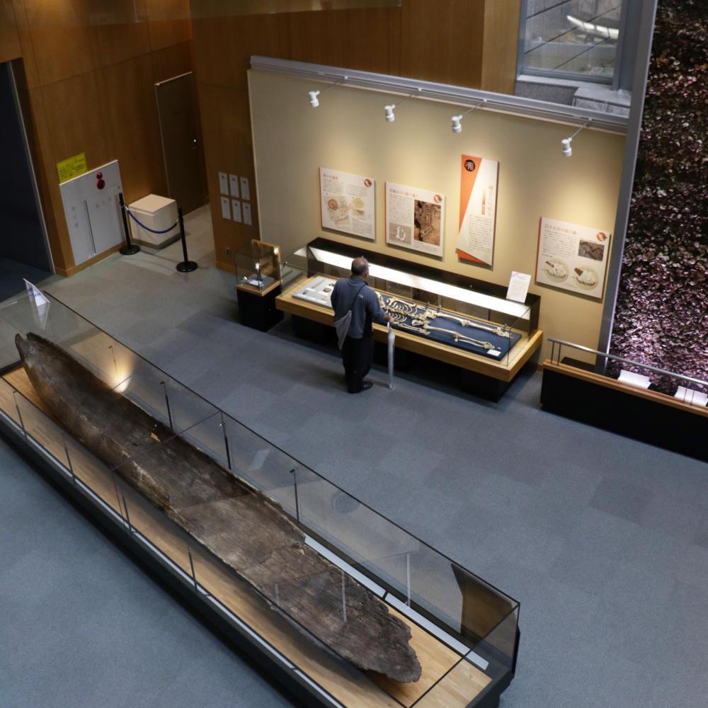 はじめての北区飛鳥山博物館_c0060143_20104548.jpg