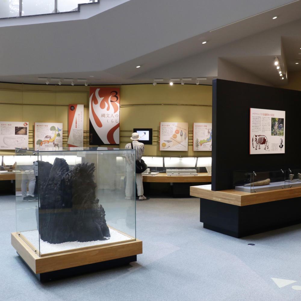 はじめての北区飛鳥山博物館_c0060143_20104896.jpg