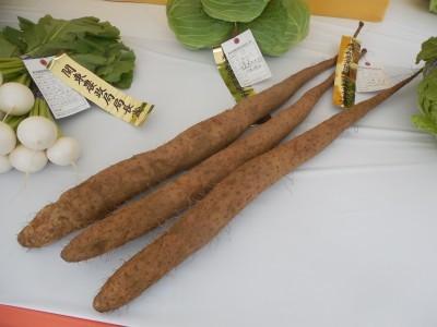 東京都農業祭農畜産物品評会_c0332682_21522801.jpg