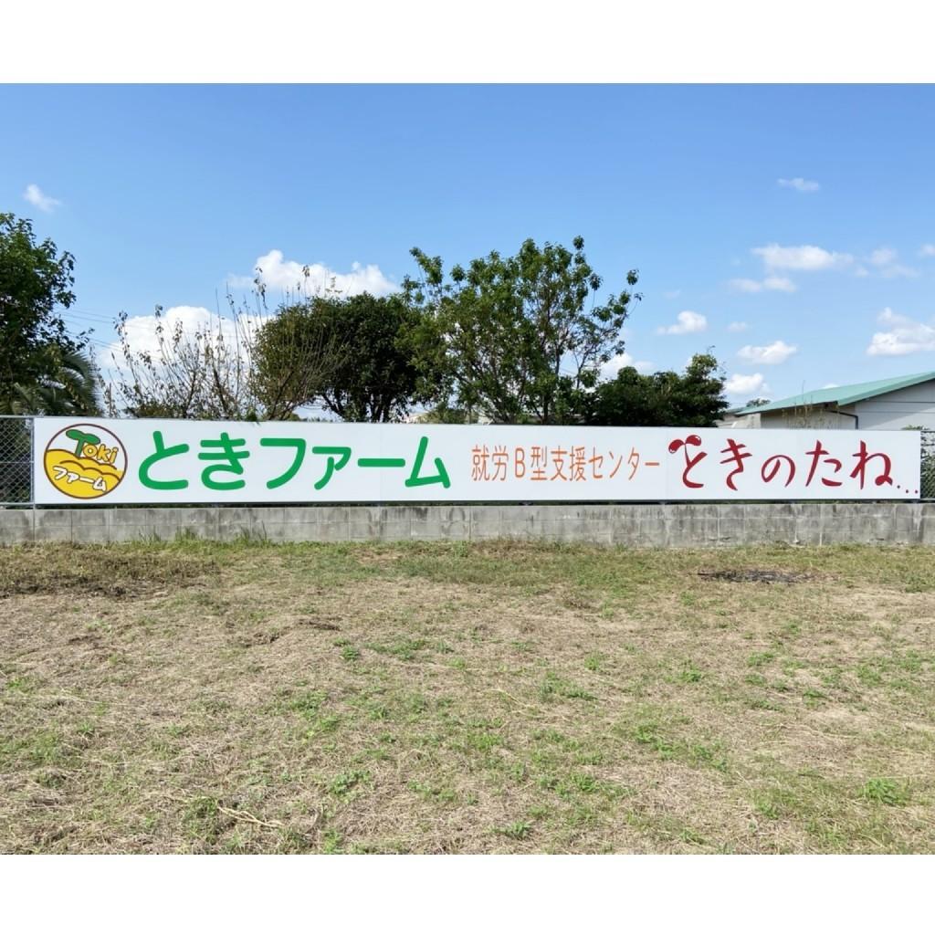 ☆ときのたね☆_a0378416_19585730.jpg