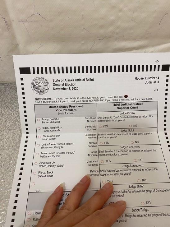 アメリカ大統領選挙 投票に行ってきた~!_b0135948_09385920.jpg
