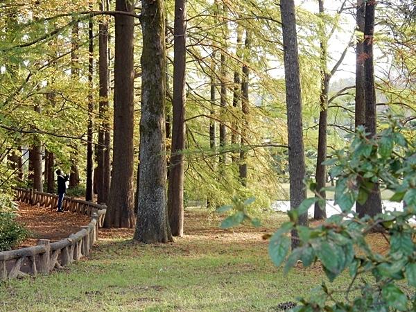 神代植物公園 1_d0075453_09342348.jpg