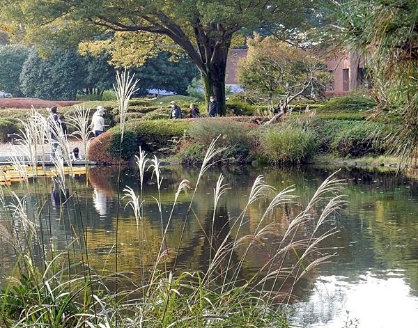 神代植物公園 1_d0075453_09354446.jpg