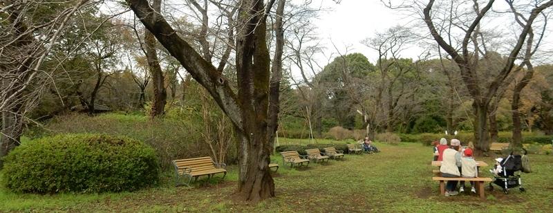 神代植物公園 1_d0075453_09405956.jpg