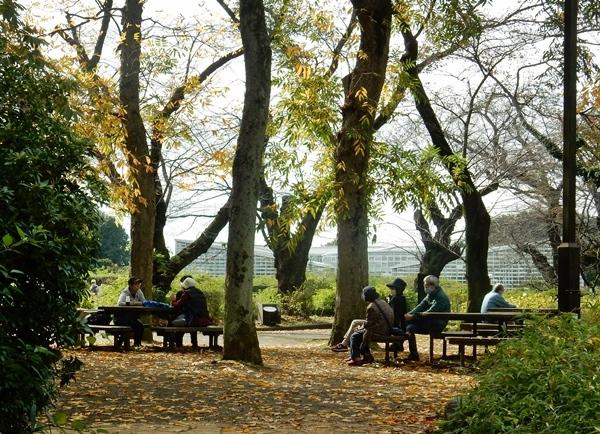 神代植物公園 1_d0075453_19342408.jpg