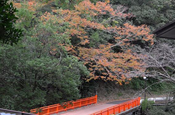 秋の湯香里橋_b0145257_18541324.jpg