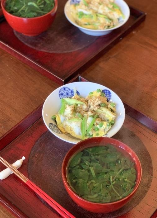 お野菜のソースとオートミール など 朝食写真_e0178312_06434388.jpeg