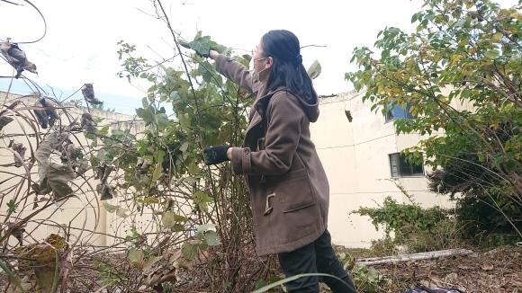 庭師・高橋さんが来た!/苔を探して散策/茶庭養生_e0156224_18023532.jpg
