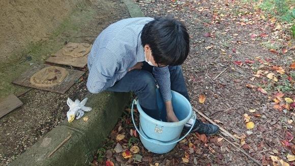 庭師・高橋さんが来た!/苔を探して散策/茶庭養生_e0156224_18030435.jpg