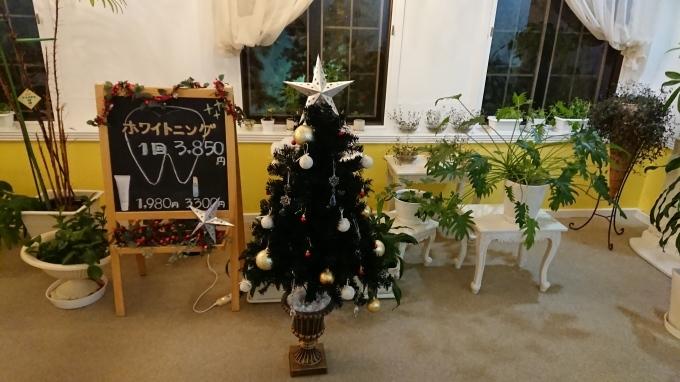 クリスマスツリーo(^▽^)o_c0350439_19161689.jpg