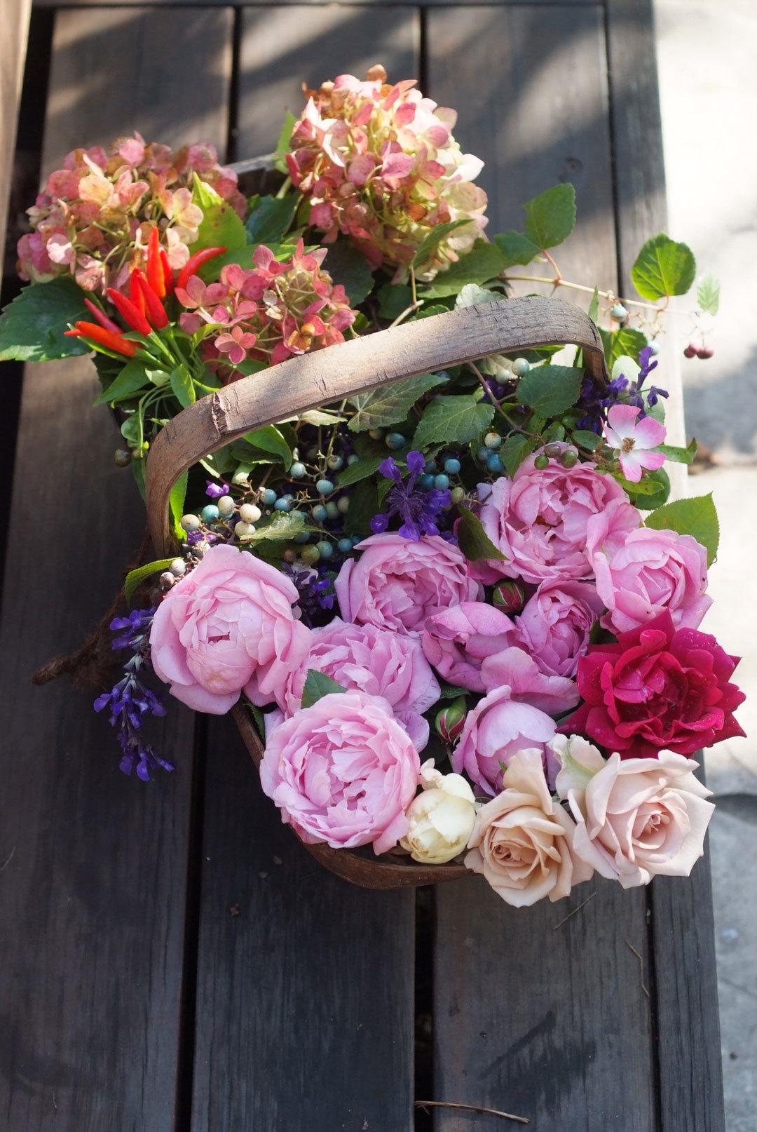 秋のバラ籠(11月3日)_b0075541_05062271.jpg