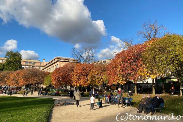 秋色の公園とクリスマスへのカウントダウン_c0024345_20484251.jpg