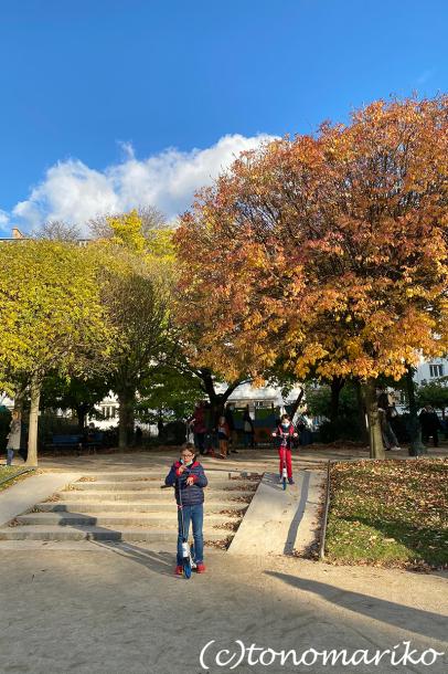 秋色の公園とクリスマスへのカウントダウン_c0024345_20484282.jpg
