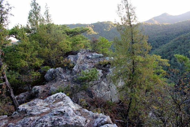 熊山 竜の岩から反射板コースを登る!の巻_f0325295_16273802.jpg