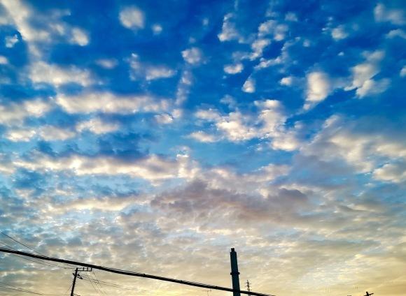 立冬の朝。。。 !  !_a0248459_14594042.jpg