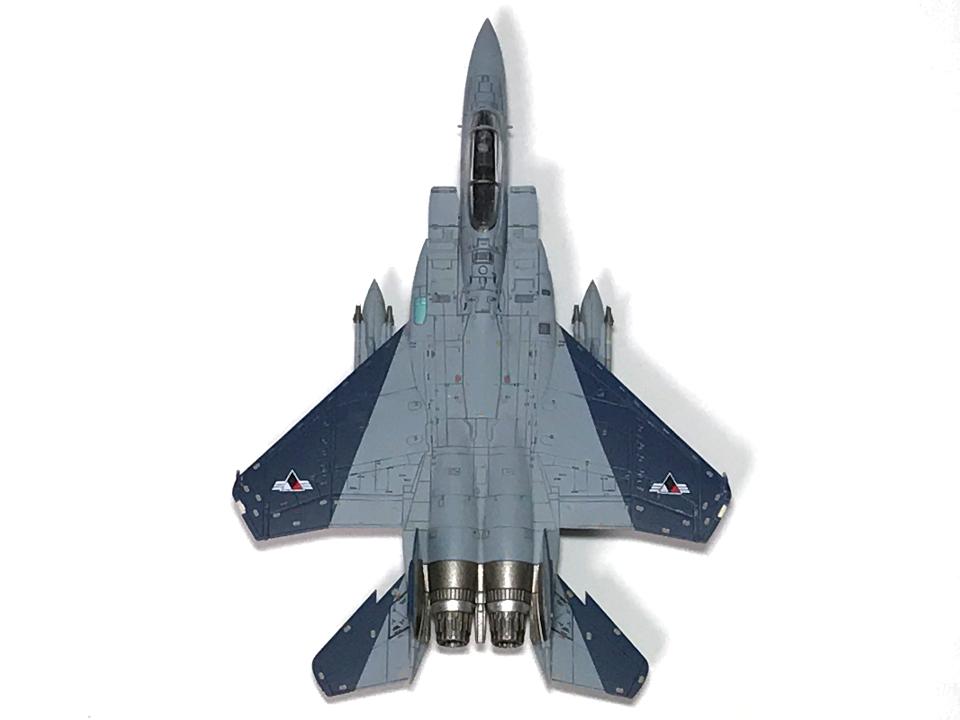 技MIX 1/144 エースコンバット F-15C ガルム1・ガルム2_b0055614_23210631.jpg