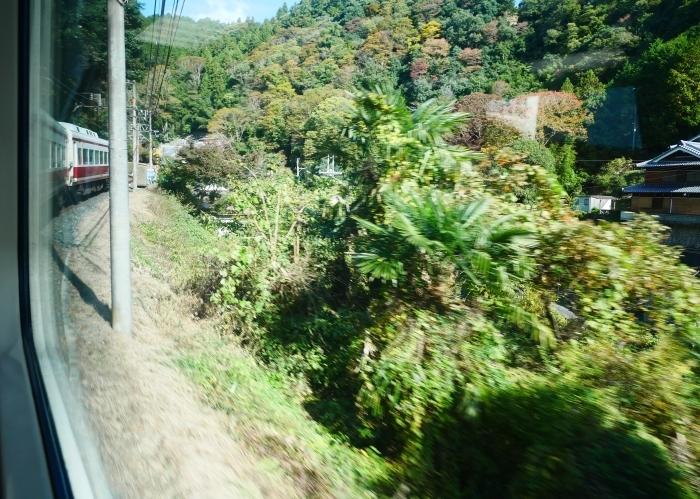 紅葉の高野山へ 1  2020-11-09 00:000_b0093754_22032282.jpg