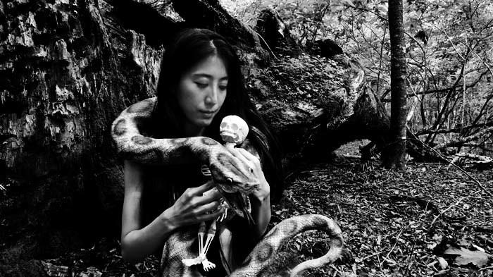 樹海の巣#196(胎児の夢)_e0292373_09572787.jpg