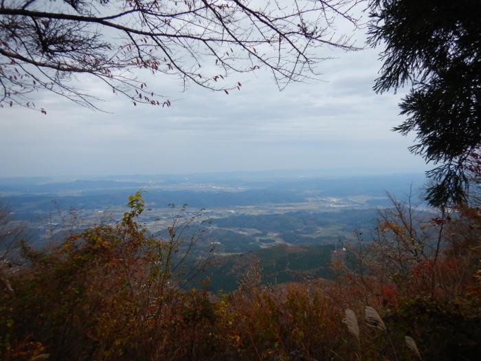 青麻山(40回目) ~ 2020年11月7日_f0170180_20461316.jpg