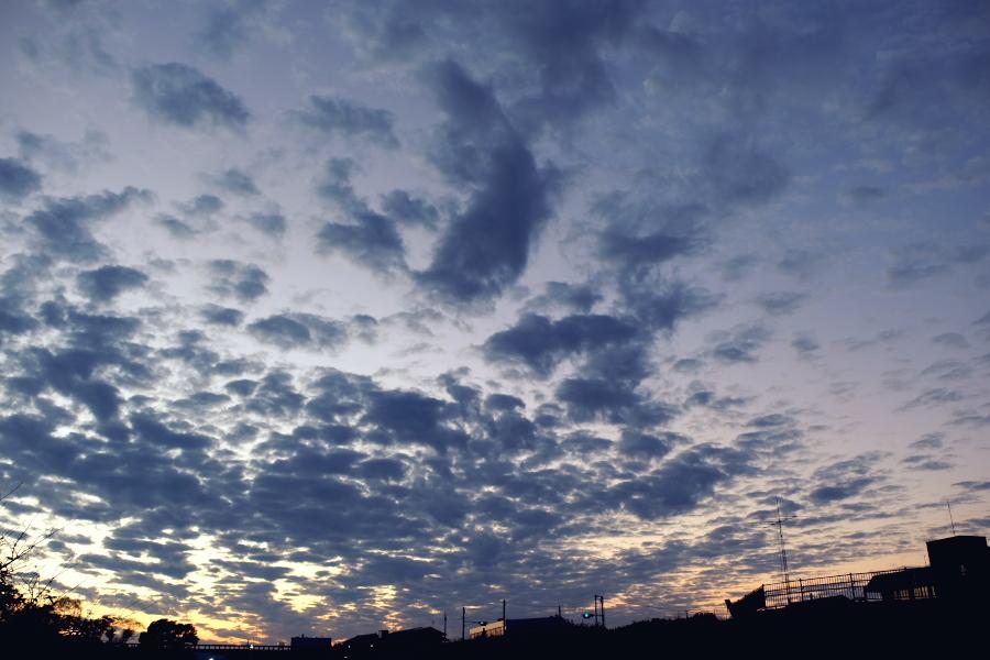 蓬莱橋 夕景 11月_e0243382_22221596.jpg