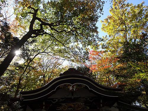 Go To 富士山!_c0137404_19422975.jpg