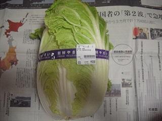 白菜を買ったよ。_c0216937_12084680.jpg
