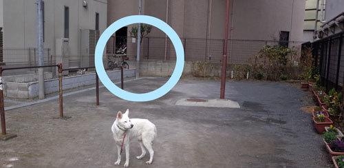 Vol.1526 本町公園_a0117039_20024085.jpg