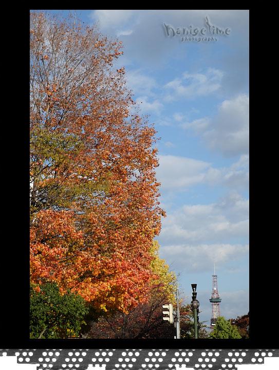 10月29日 札幌_d0246309_19402728.jpg