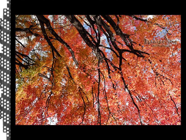 10月29日 札幌_d0246309_19404602.jpg