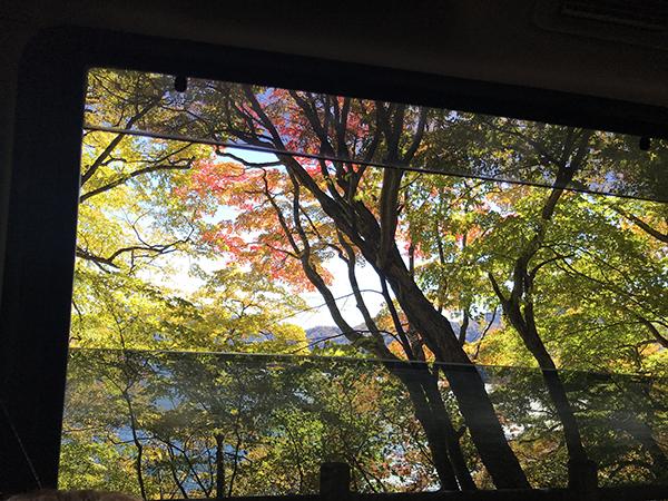 秋のオープンハウス2020.11.28sat_f0170331_12325024.jpg