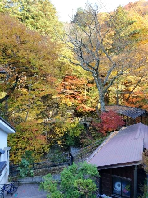 15年ぶりのほんとの冬。11月出店の続き(日本にいます)_d0132132_23371183.jpg