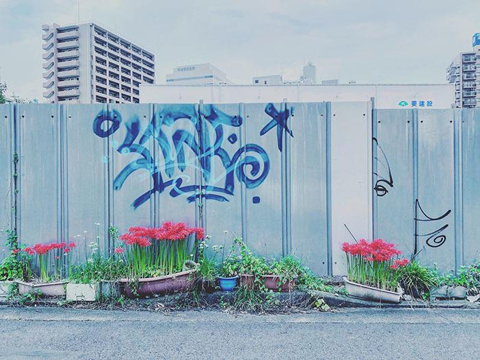 水戸市泉町 / iPhone 11_c0334533_22501772.jpg