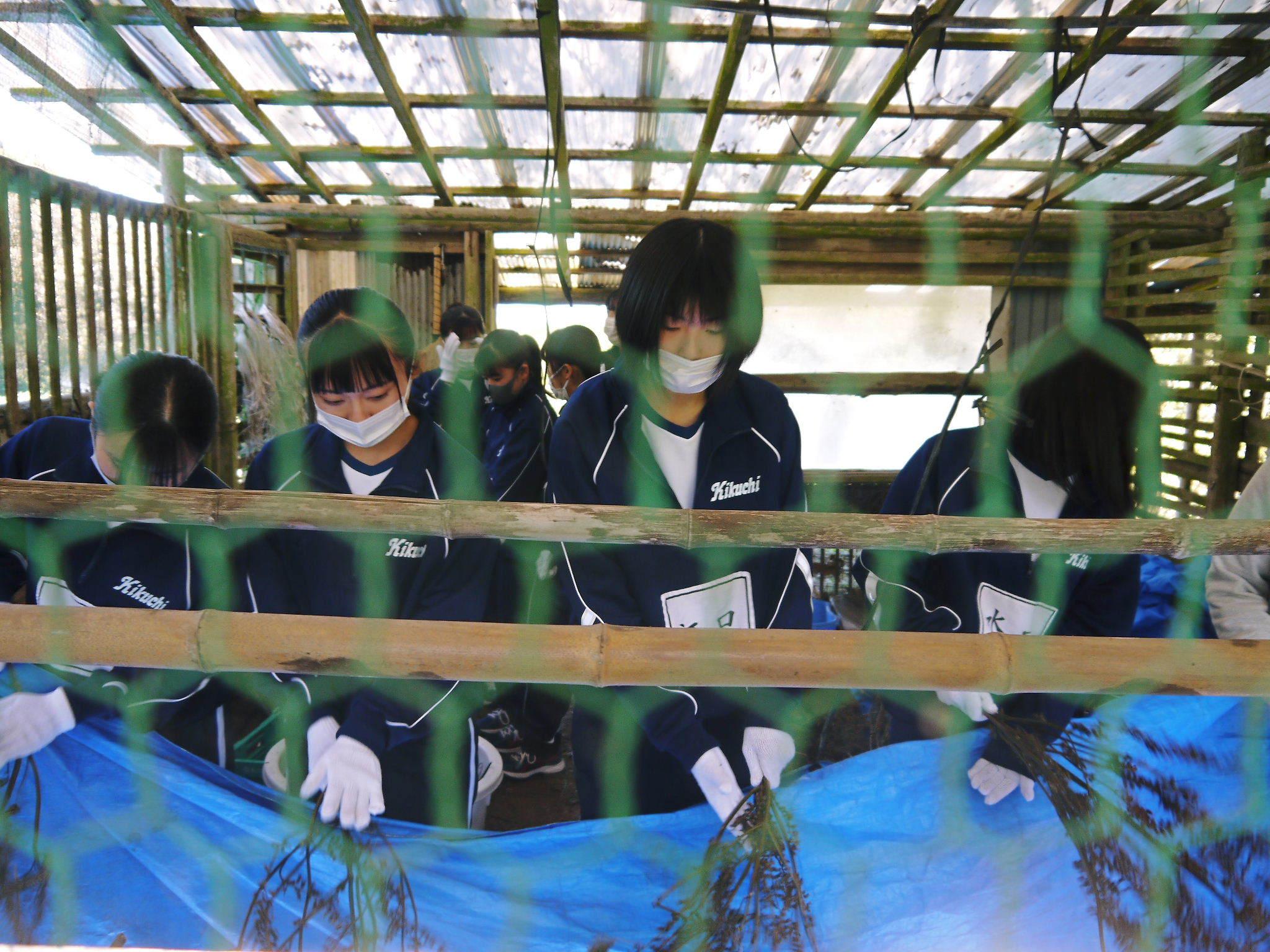 熊本県立菊池高等学校の生徒さんたちが研修にやってきました!(2020/前編)_a0254656_19251904.jpg