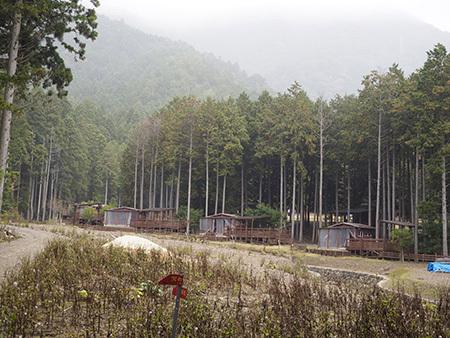 森のひとときリピート_b0035072_14070011.jpg