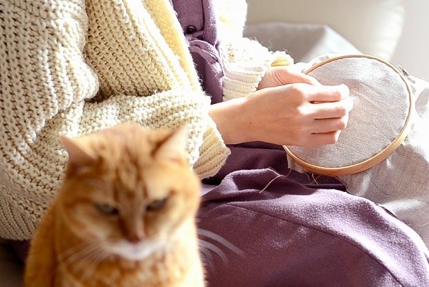 秋の猫襟_d0025294_20072854.jpg