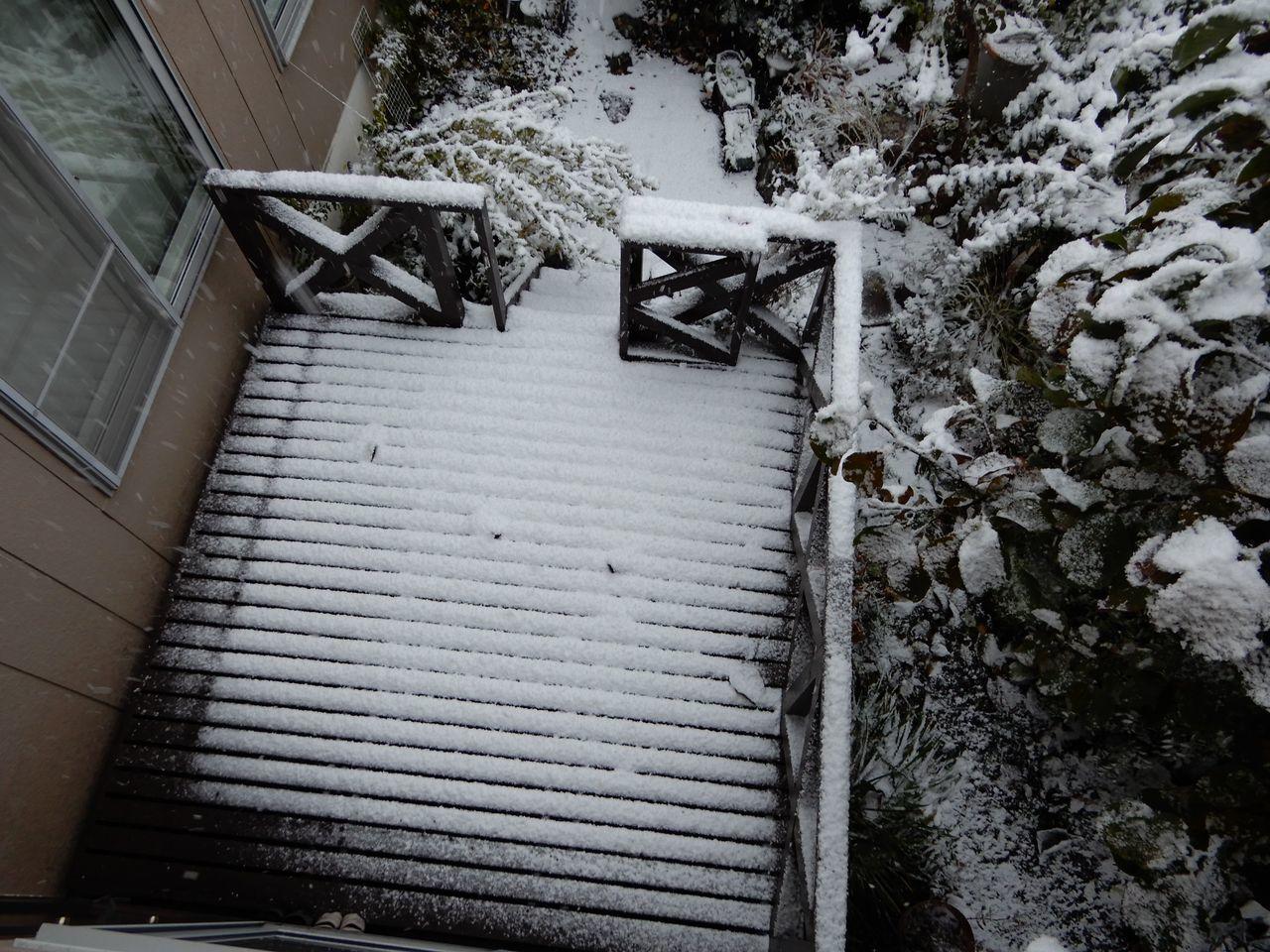 この冬一番の寒い雪景色の朝_c0025115_21112853.jpg