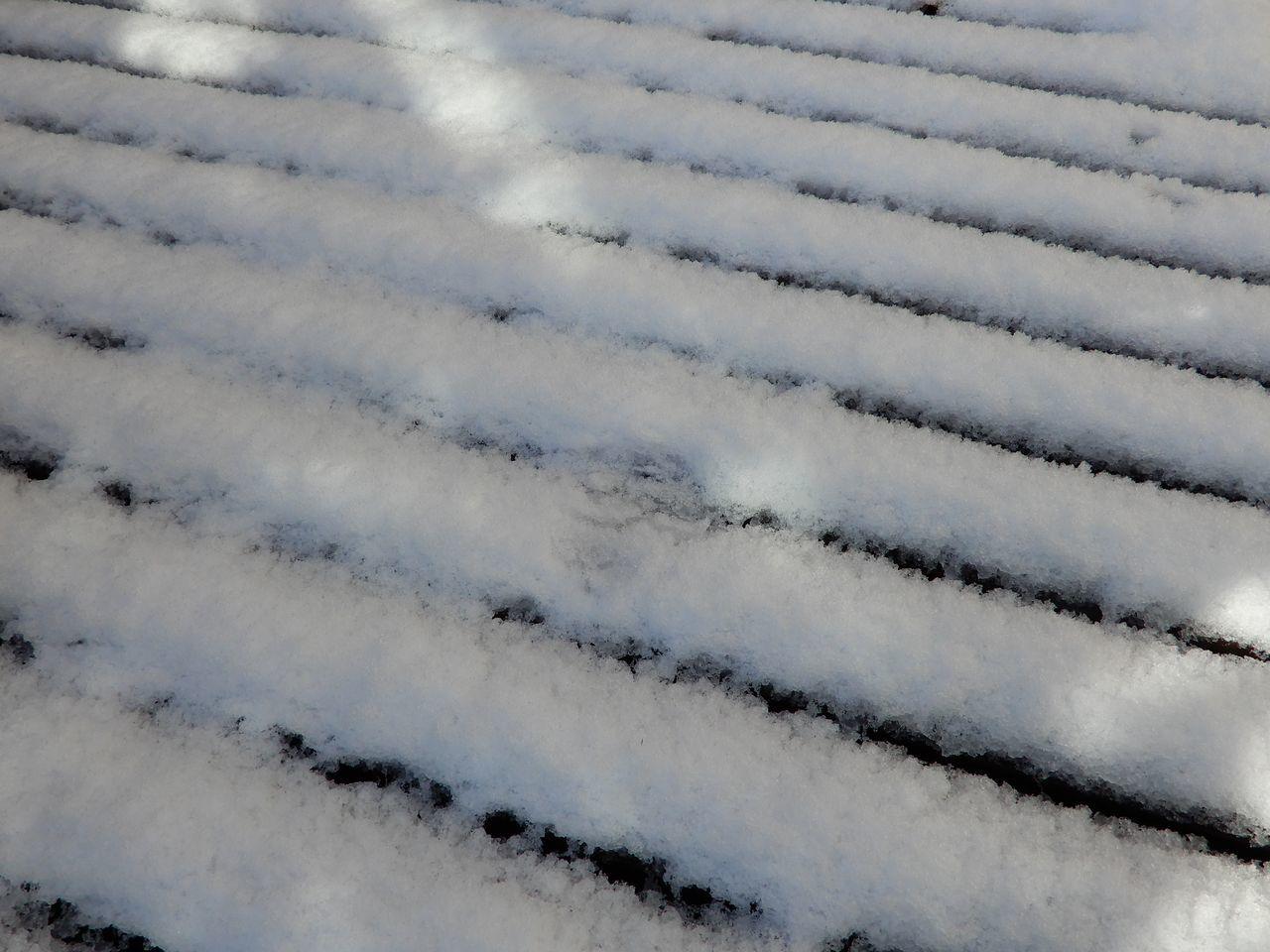この冬一番の寒い雪景色の朝_c0025115_21115954.jpg