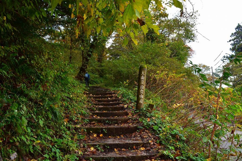 秋の大山_f0174419_20160732.jpg