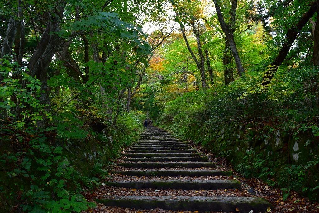 秋の大山_f0174419_20174473.jpg