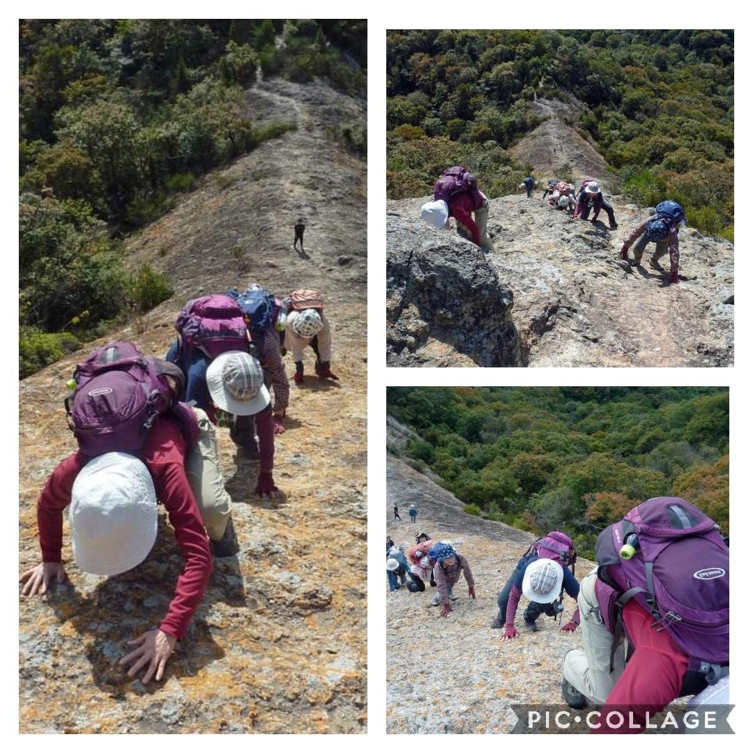 スリル満点 小野アルプス 『紅山』岩登り_c0218841_14380228.jpg