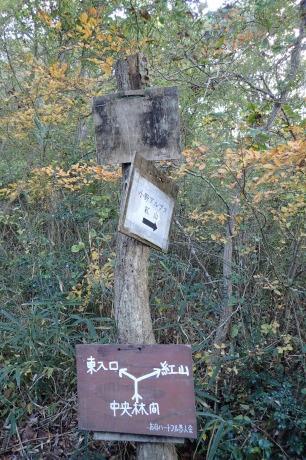 スリル満点 小野アルプス 『紅山』岩登り_c0218841_14483251.jpg